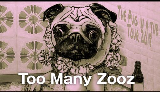 「Too Many Zooz」と「Leo P」