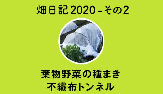 【畑日記2020-その2】葉物野菜の種まき+不織布トンネル