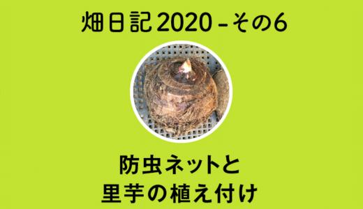 【畑日記2020-その6】防虫ネットと里芋の植え付け