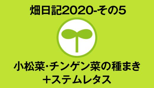 【畑日記2020-5】小松菜・チンゲン菜の種まき+ステムレタス